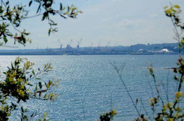 Brest du pont Albert Louppe
