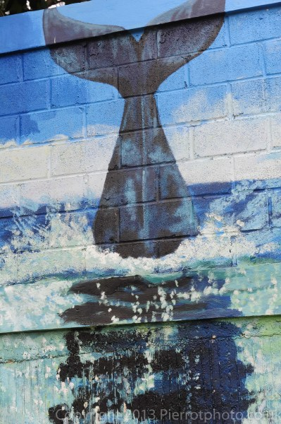 Local mural of the humpback whales in Samana, Dominican Republic