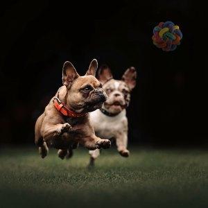 Piłka pleciona dla psa