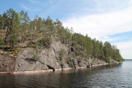 Kallio ja puita.