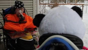 Mystinen panda