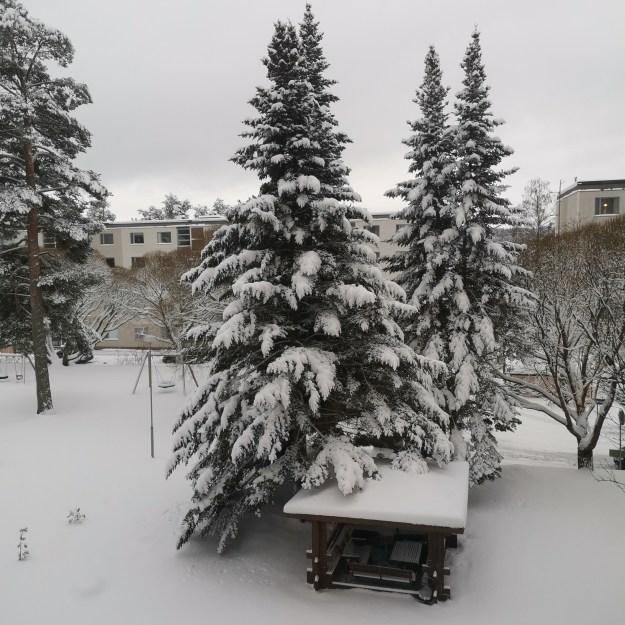 Lunta satoi paljon.