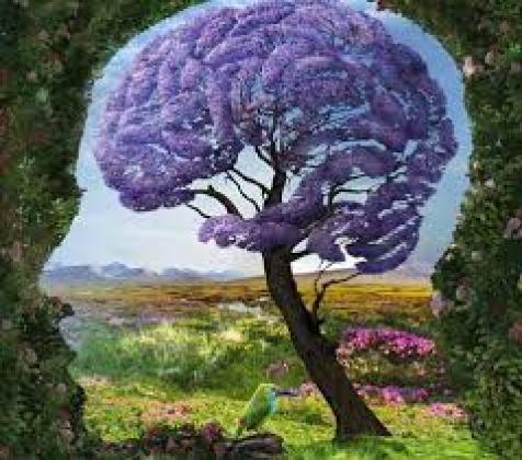 testa con albero