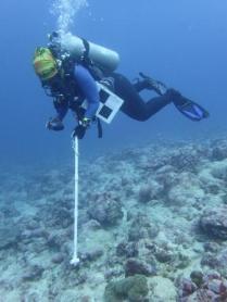 Scientist Motusaga Vaeoso practices taking benthic photos.
