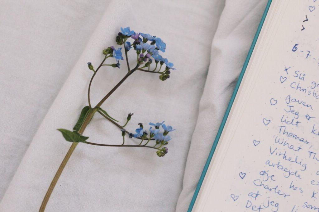Bullet Journal metoden - taknemmelighedsdagbog