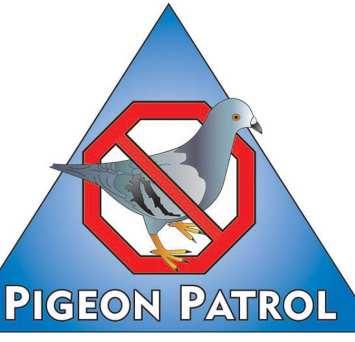 Pigeon Patrol Bird Control Mobile Unit Services