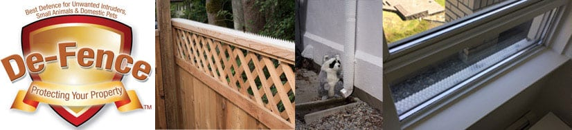 defence raccoons fence ledge spike