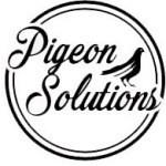 Pigeon Control Phoenix
