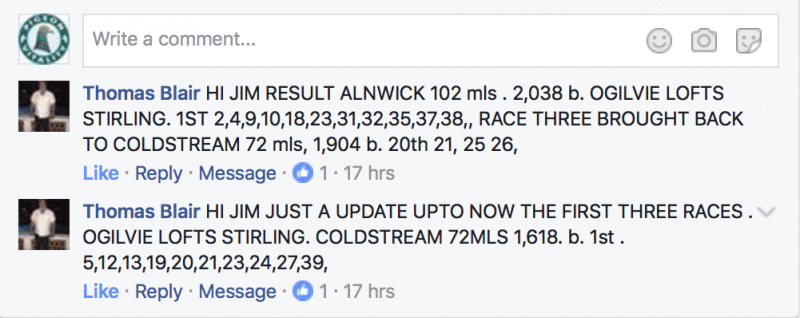 tam_blair_results_may_2017