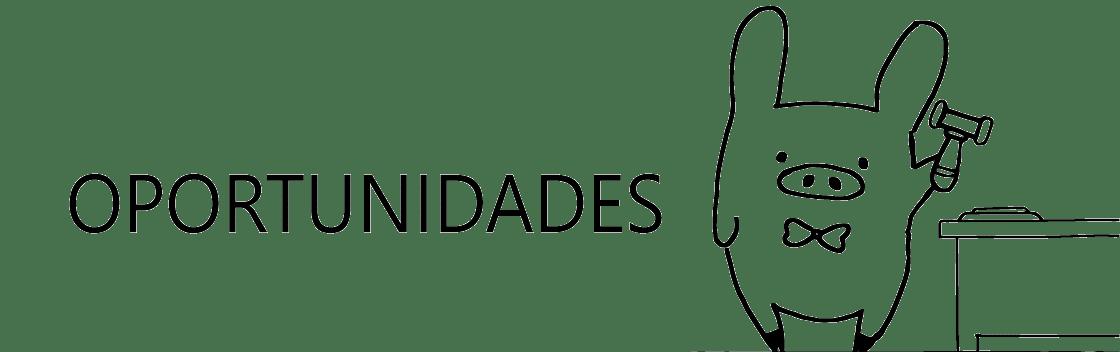 banner-subasta