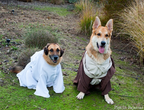 Leia and obi wan 30504364560 o
