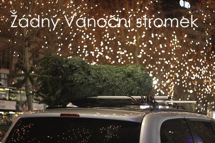 Letos jsme neměli Vánoční stromek