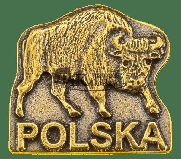 Przypinka polski żubr