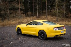Mustang side