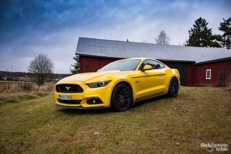 Mustang pose