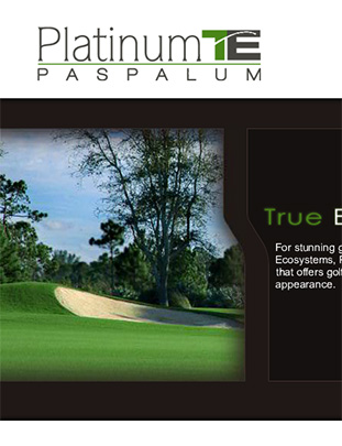 Platinum TE™ Website