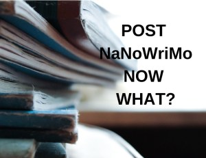Post NaNoWriMo. Now What?