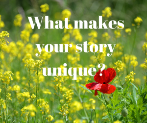 What makes your story unique?