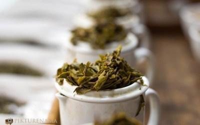 Tea tasting with Goodricke tea