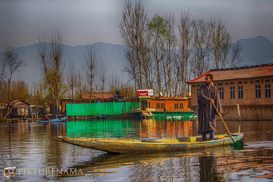 Shikara Ride in Dal Lake 7