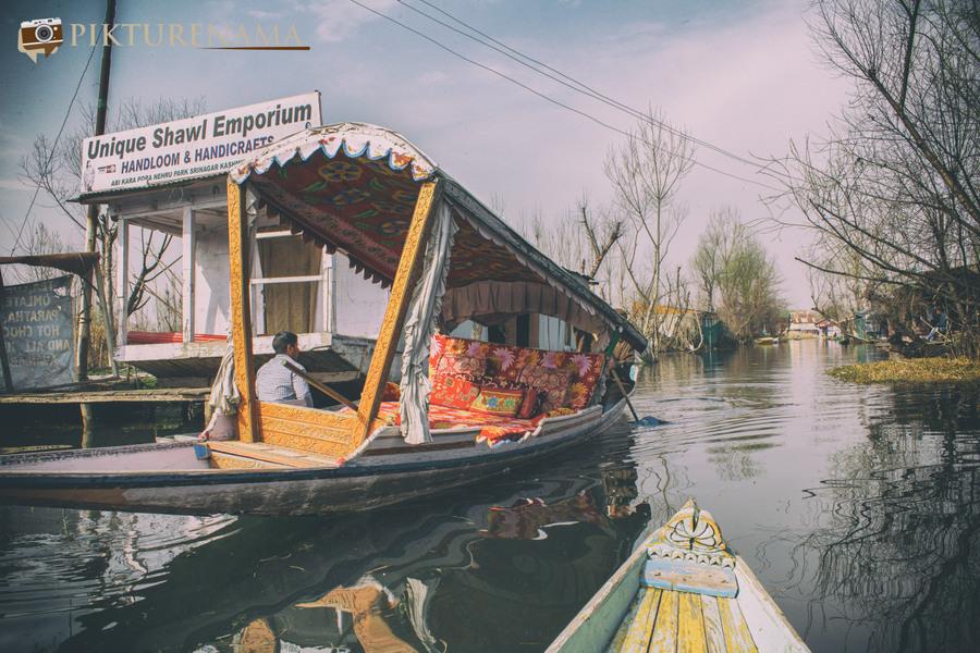 Shikara Ride in Dal Lake 25