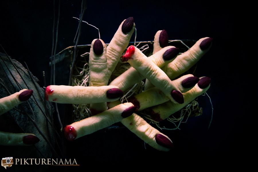 Halloween Witch Finger cookies - 8