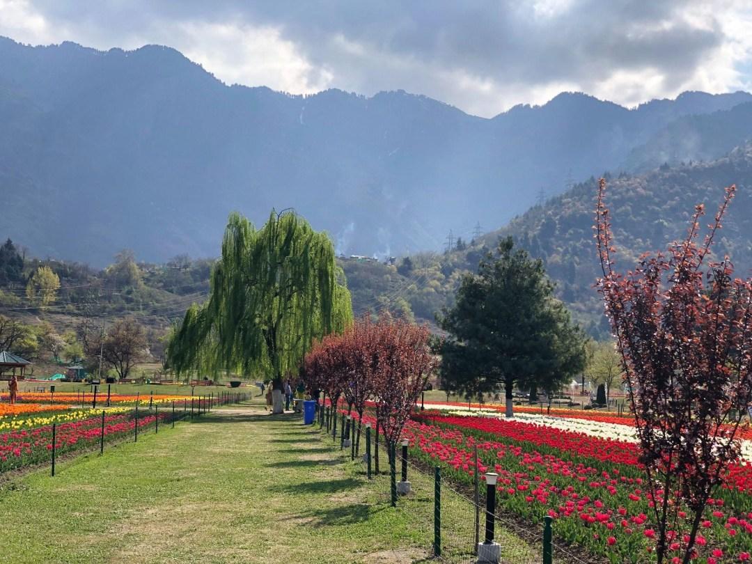Kashmir - Nishant Garden