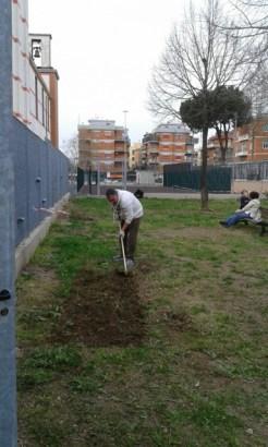 Preparazione dell'orto urbano