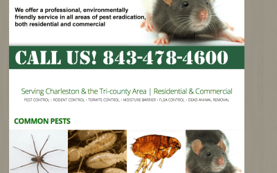 New Website for Green's Exterminating in Charleston, SC