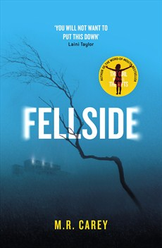 Fellside by MR CArey