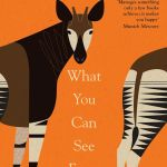 What You Can See From Here by Mariana Leky