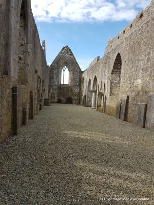 View of the nave of the church from south end church at Askeaton Friary.
