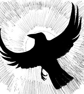 Black Crow 001