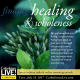 finding healing and wholeness