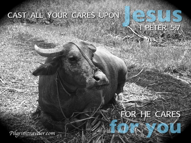 "1 Peter 5:7 ""Casting all your care upon Him, for He cares for you."""