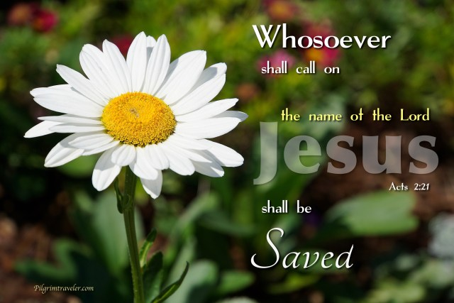 """Acts 2:21 """"Whosoever shall call on the name of the Lord shall be saved."""""""