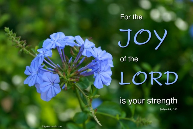 "Nehemiah 8:10 ""For the Joy of the Lord is your strength."""