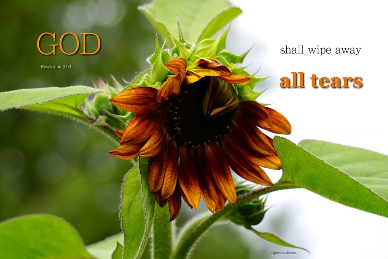 """Revelation 21:4 """"And God shall wipe away all tears from their eyes."""""""