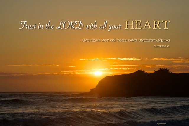 """Proverbs 3:5 """"Trust in the Lord with all your heart and lean not on your own understanding."""""""