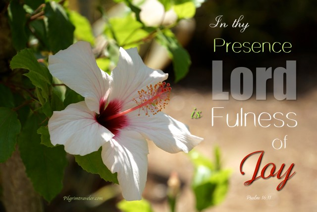 "Psalm 16:11 ""In thy presence is fulness of joy."""