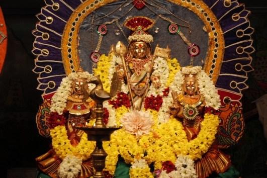 1m Thiruvilaa - Mahotsavam 2014 (47)