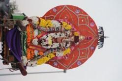 1m Thiruvilaa - Mahotsavam 2014 (83)