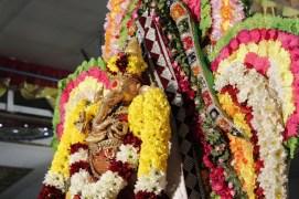 Ainthaam Thiruvilaa (Morning) - Mahotsavam 2014 (33)