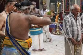 Ealaam Thiruvilaa (Kaalai) - Mahotsavam 2014 (77)
