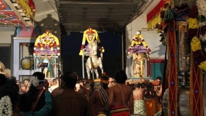 Ettaam Thiruvilaa (Iravu) - Mahotsavam 2014 (143)