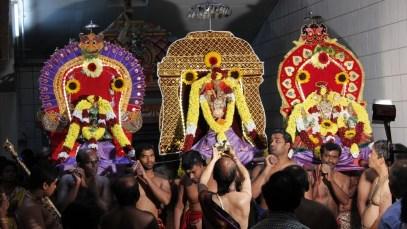 Ettaam Thiruvilaa (Iravu) - Mahotsavam 2014 (45)