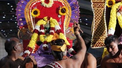 Ettaam Thiruvilaa (Iravu) - Mahotsavam 2014 (56)