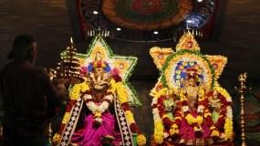 Naangaam Thiruvilaa (Iravu) - Mahotsavam 2014 (5)