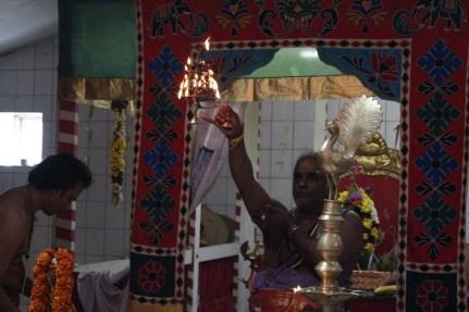 Naangaam Thiruvilaa (Kaalai) - Mahotsavam 2014 (50)