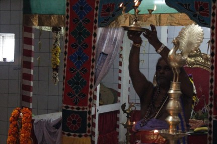 Naangaam Thiruvilaa (Kaalai) - Mahotsavam 2014 (51)